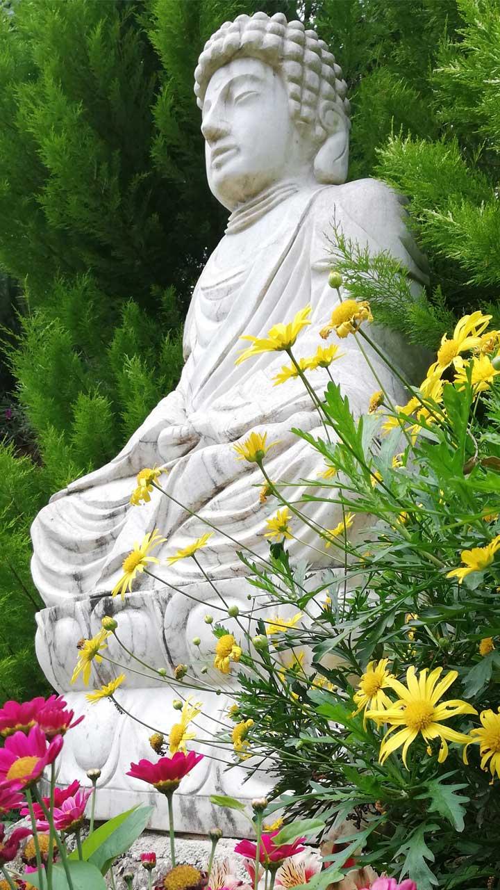 Βούδας - Κήπος Διαλογισμού | Ζέλιος ΓΗ